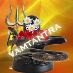 Naag puja on nag panchami by vamtantra