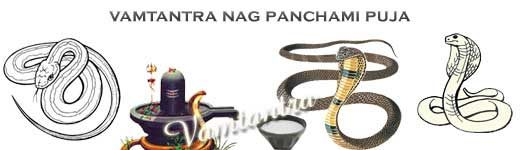 powerful naag puja on nag panchami by vamtantra