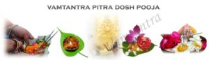 powerful puja for pitra dosh in the horoscope.